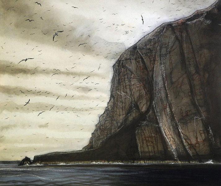 Bass-Rock-gannet-Colony-2