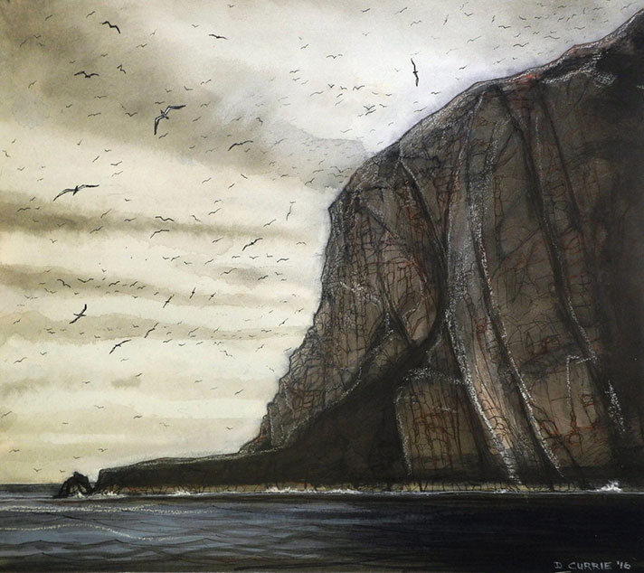 Bass-Rock-gannet-Colony-2
